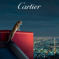 Cartier Confidential Podcast